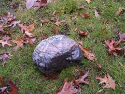 puja to a rock