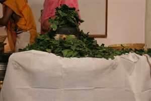 Bilva Leaf for Lord Shiva