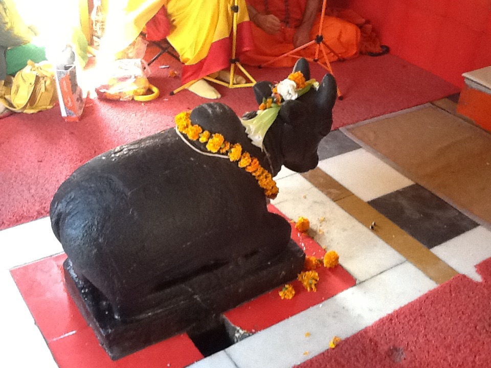 Vishwanath Uttarkashi_8852