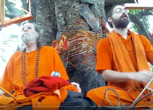 banyan-tree-kankhal