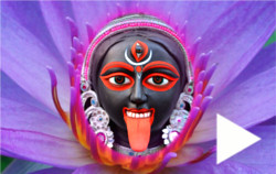 kali-face-in-purple-lotus-play