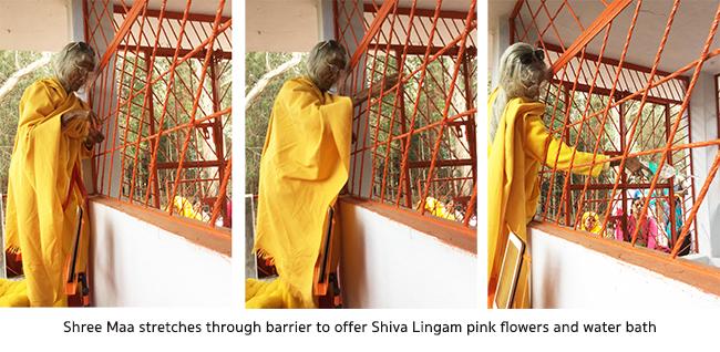 shree-maa-puja-shiva-on-mountain