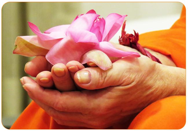 swamiji-lotus