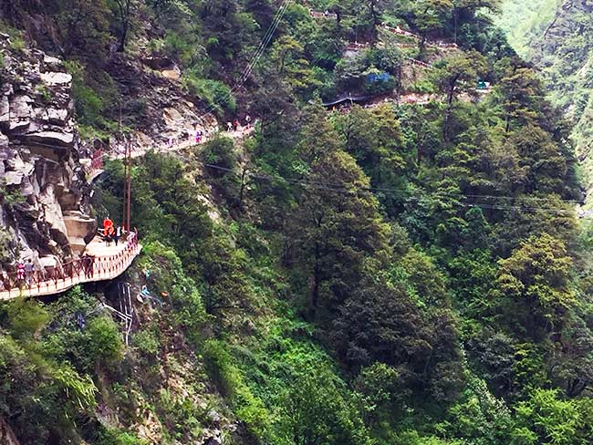 swamiji-on-mule-to-Yamunotri