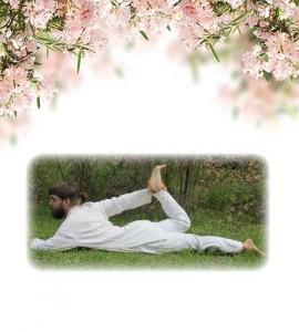 yoga-11-ardha-dhanurasana