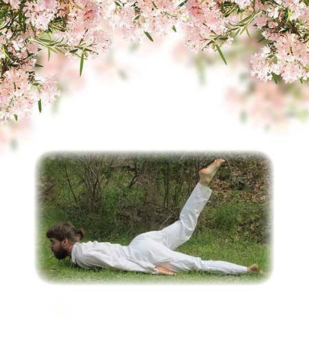 yoga-13-half-locust