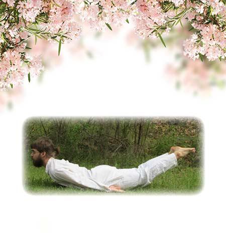 yoga-14-full-locust