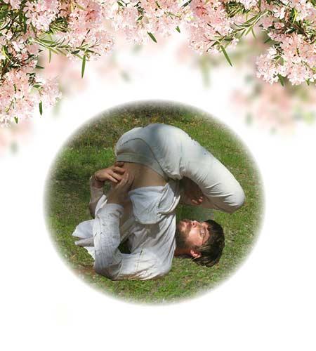 yoga-38-chakrasana