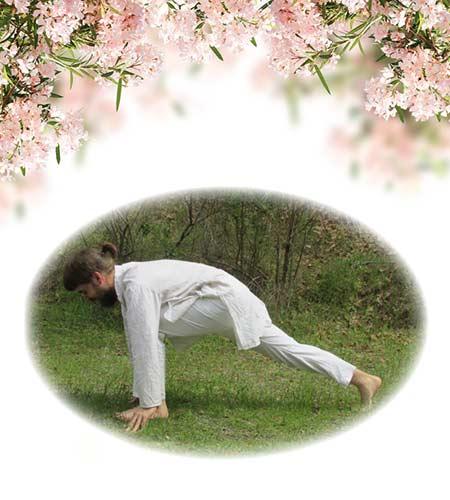 yoga-4-left-leg-lunge