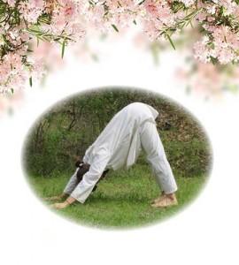yoga-8-parvatasana