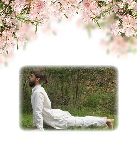 yoga-9-bhujagasana